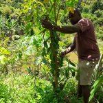 Notre Collaborateur ramassant la vanille